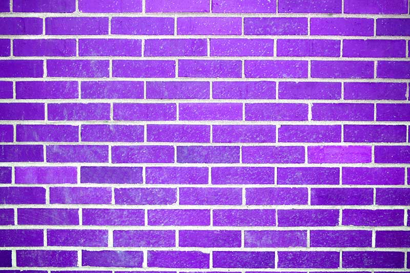 purple bricks wilson tominey